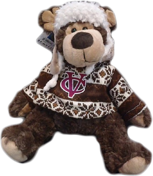 Image for the Vassar College Cozie Bear product